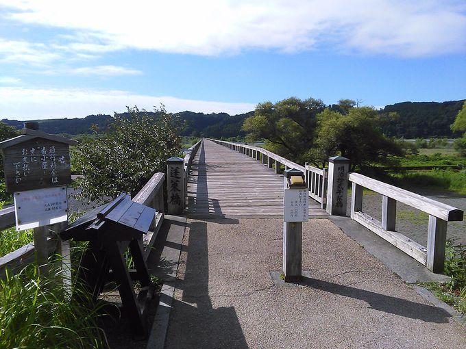 世界最長の吊り橋も!大井川の魅力的な「橋めぐり」の旅