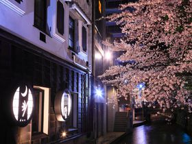 春の「高瀬川」沿いはまさに花魁道中!川面に浮かぶ桜の艶やかさに惚れ惚れ!
