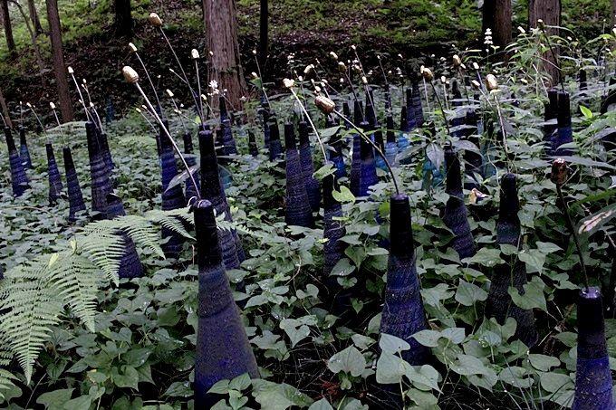 陶芸の里・茨城「笠間」で訪れるべき大人のアートスポット5選