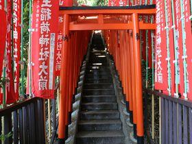 摩天楼のはざまに佇む江戸山王大権現「日枝神社」でパワーを貰おう!|東京都|Travel.jp[たびねす]