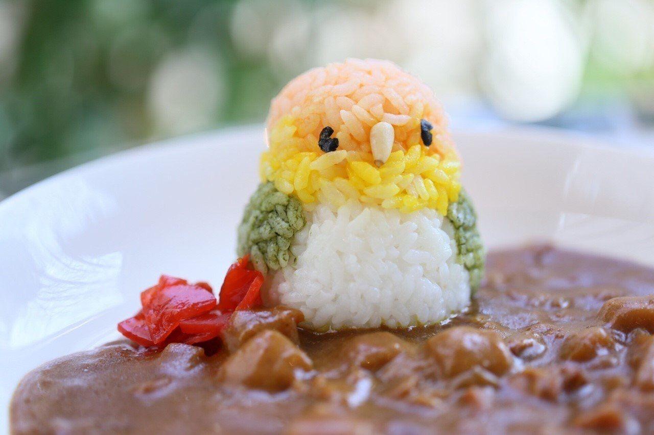 可愛い小鳥を食べちゃう!?吉祥寺「ことりカフェ」でグルメを堪能!