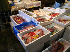 千葉の市場巡り!美味しい市場食堂やお薦め白ハマグリ(ホンビノス貝)も