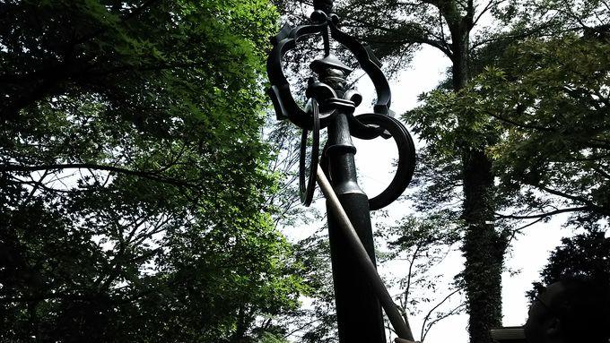 豊かな自然と天狗の里~リフトで登る東京「高尾山」