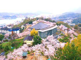 尾道・千光寺公園でお花見デート!夜桜と夜景がロマンチック