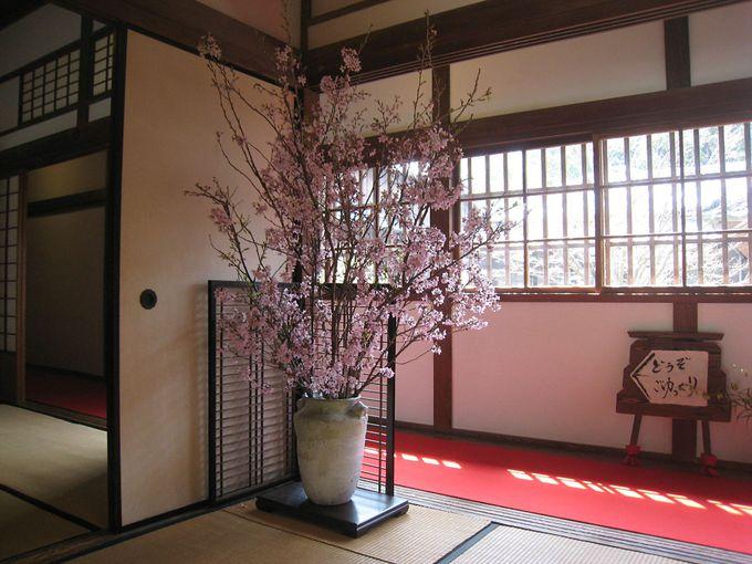 和風建築と生け花を愉しむならここ!下関「長府毛利邸」の観光客に話題の「和のおもてなし」