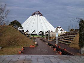 日本でここだけ!ツルの博物館「クレインパークいずみ」でツルをトコトン追求!