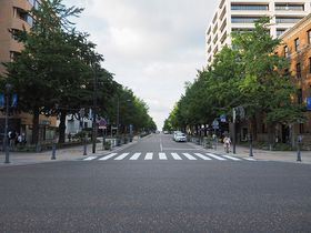 日本初の西洋式街路!海へと続く並木道・横浜「日本大通り」を歩いてみよう