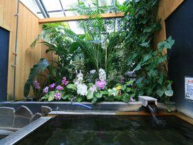 花と緑の貸切風呂!別府「陽だまり温泉 花の湯」は子供も大喜び