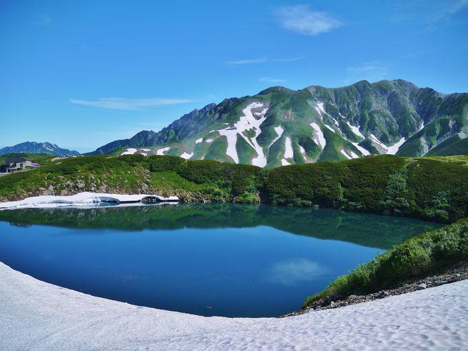 [夏のみくりが池]登山経験がなくてもスニーカーレベルで