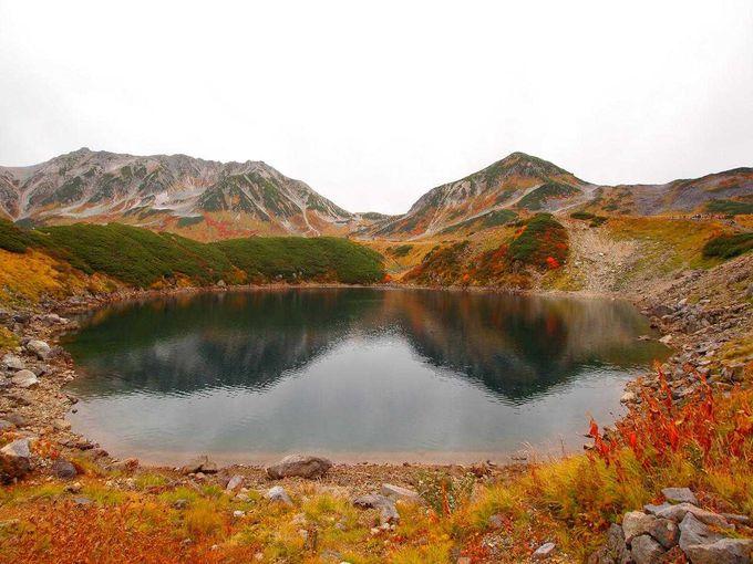 [劔岳・立山]室堂発、日本百名山を望む散策
