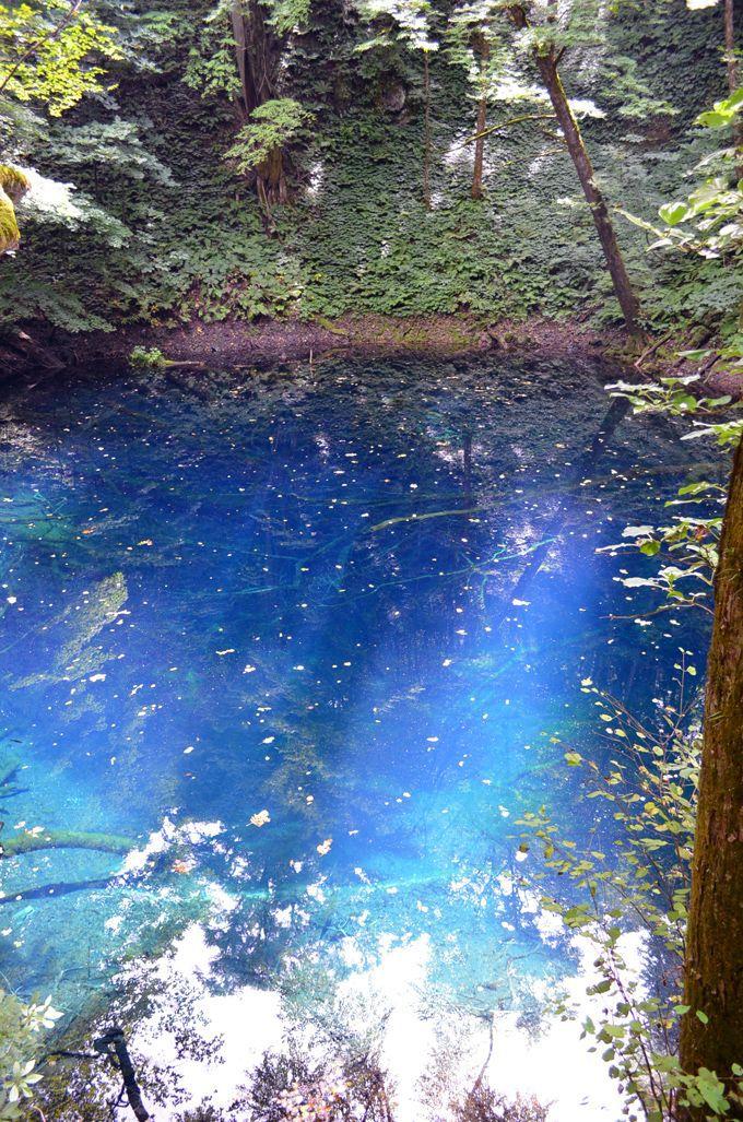 神秘のインクブルー!白神山地の青い絶景「青池」(青森県)