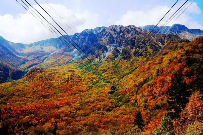 [紅葉]360度大パノラマ!紅葉真っ盛りの立山黒部アルペンルート