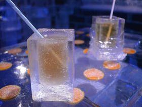 ハウステンボスで美しすぎる氷のバー「フラワーアイスカフェ」を体感せよ!|長崎県|トラベルjp<たびねす>