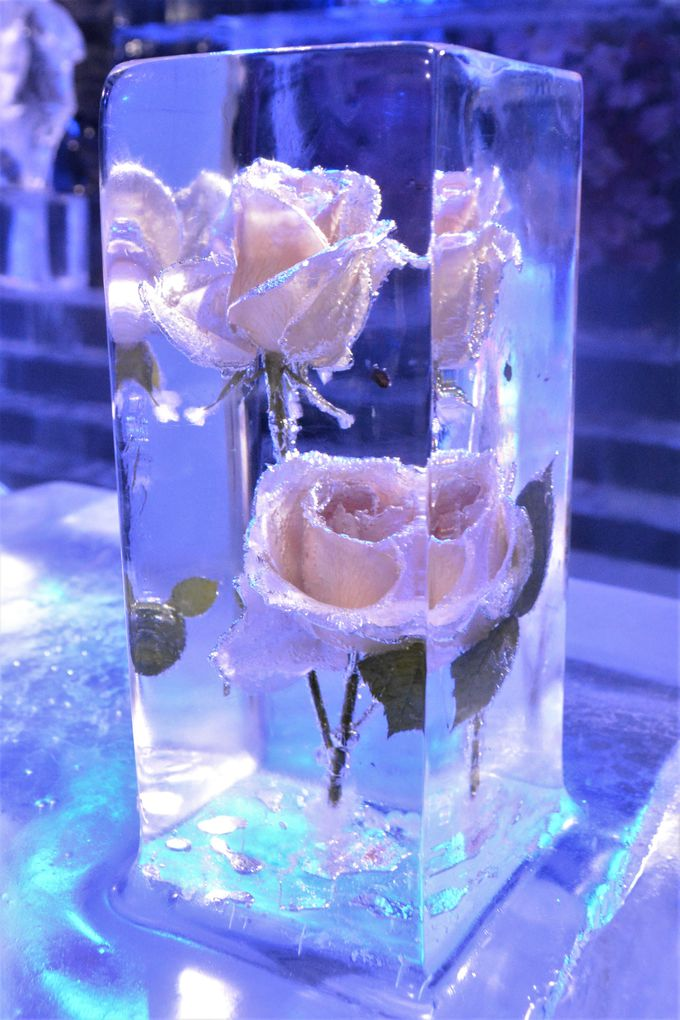 氷と花のコラボレーション