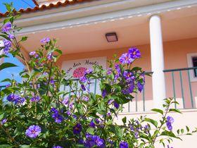 ポルトガルでかわいいゲストハウスに泊まろう!