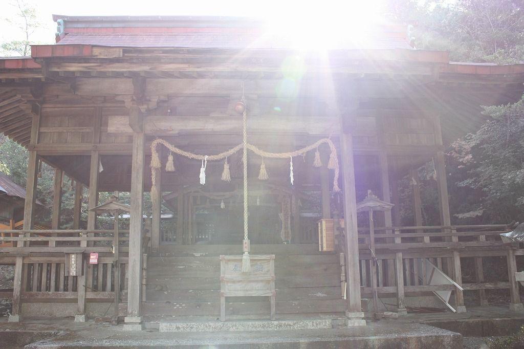光のパワーが集まる拝殿に参拝しよう。