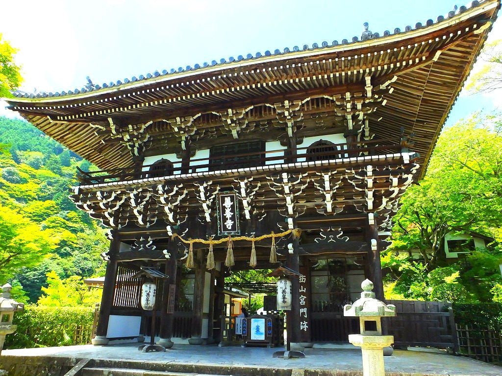 山寺にお参りするなら緑深い季節こそ丁度いい!