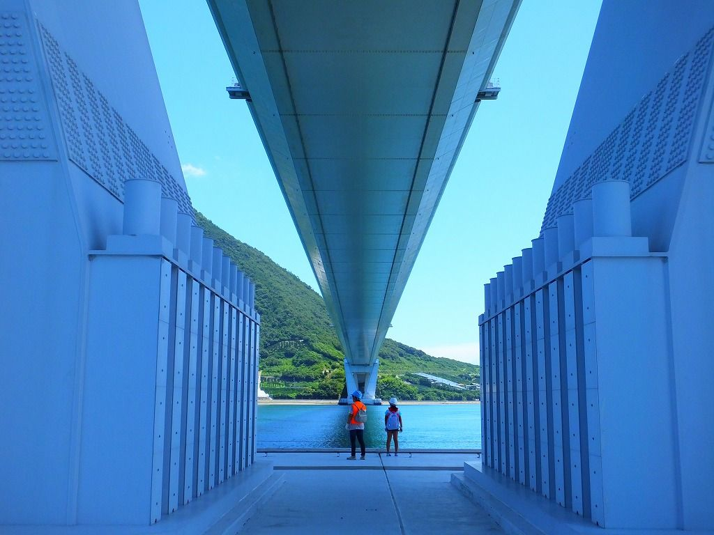 海中基礎部:多々羅大橋を下から見上げる
