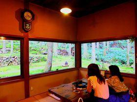 森の中に広がるコケの世界!愛媛・宇和「茶房 こけむしろ」でまったりしたい