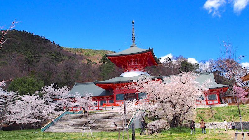 信州の穴場観光スポット!善光寺の雲上殿で絶景と秘仏を拝もう