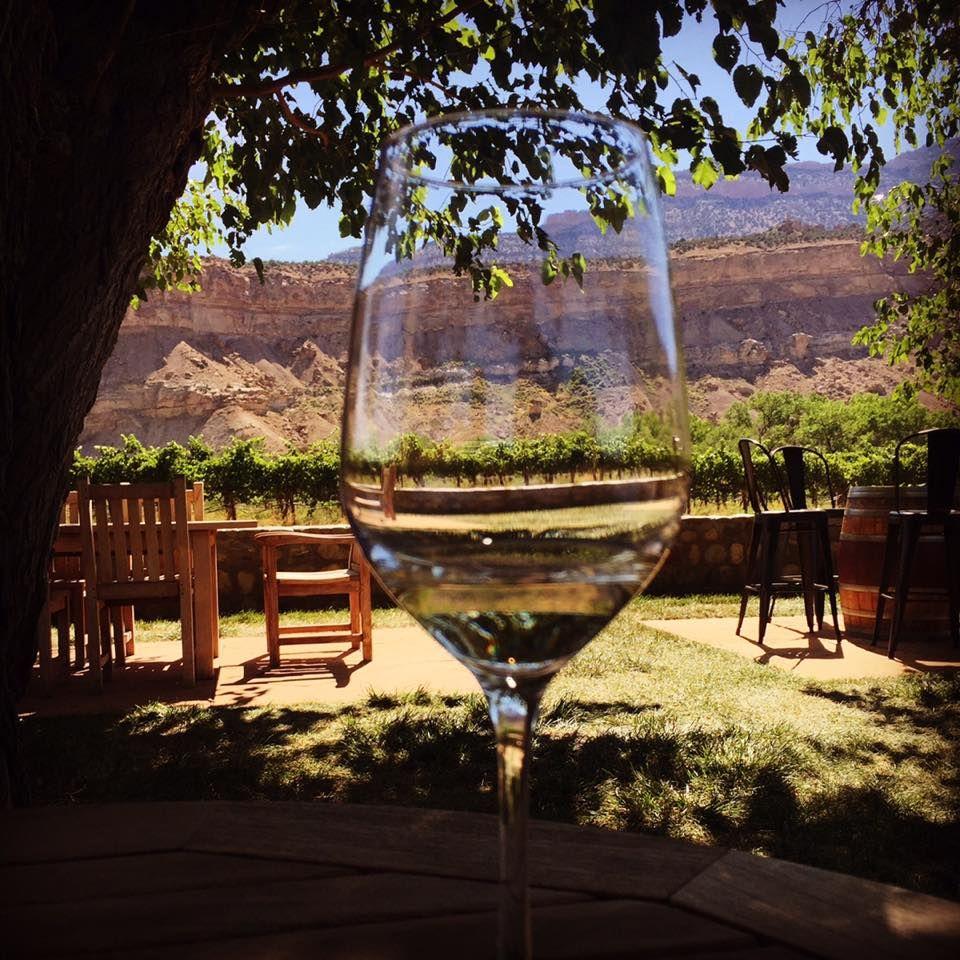ブドウ園を散策して、ワインカントリーでティスティングを楽しむ
