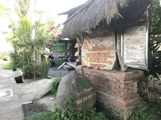 3.絶景スローライフカフェ「Sari Organik(サリ・オーガニック)」