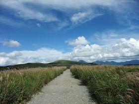 初秋の霧ヶ峰高原の絶景!360度パノラマの景色を楽しもう!!