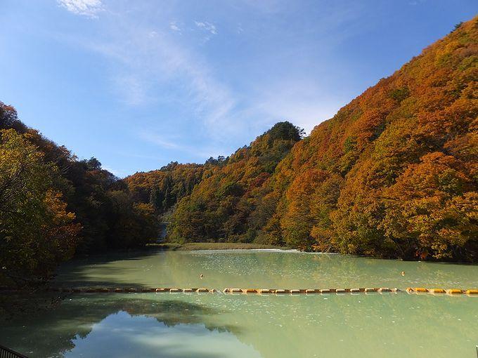 エメラルドグリーンの水が神秘的な品木ダム!
