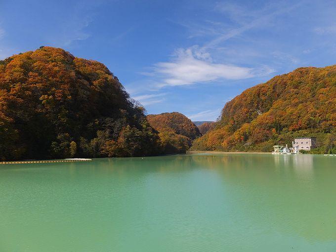 日本で唯一の役割を持ったダム!