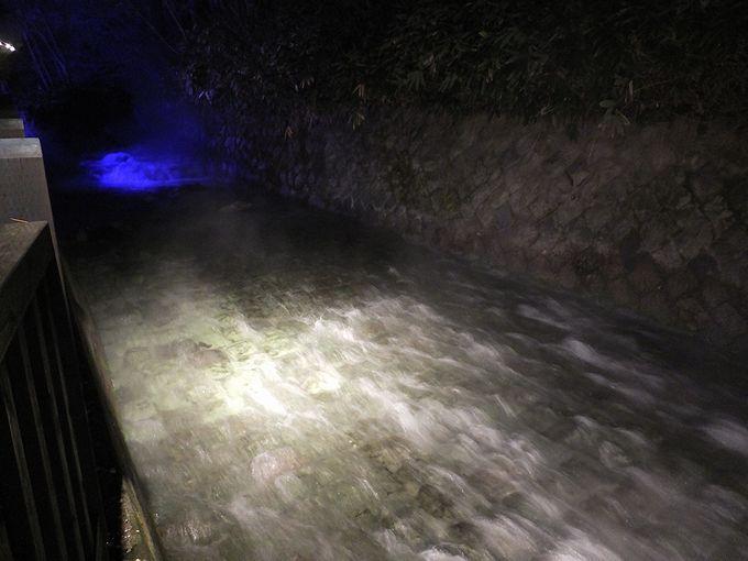 幻想的なブルーにライトアップされた夜の西の河原公園が美しすぎる!