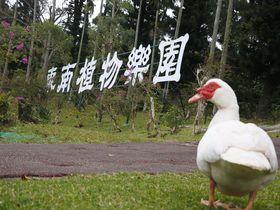 開園から50年!沖縄のテッパン観光名所「東南植物楽園」