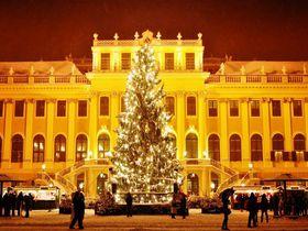 世界遺産の中でも開催!ウィーンのクリスマスマーケット完全ガイド