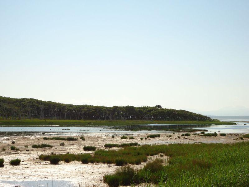 道東の野付半島へ〜日本最大規模の砂嘴が生み出す神秘的な風景とオホーツクの風を感じよう!