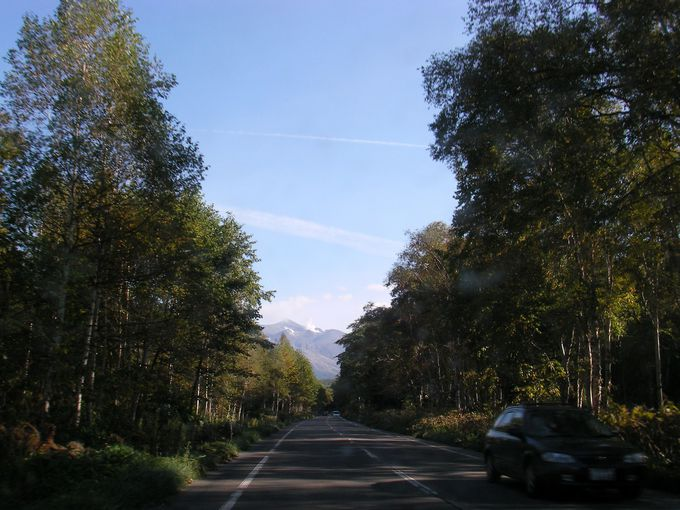 白樺街道を通って十勝岳へ