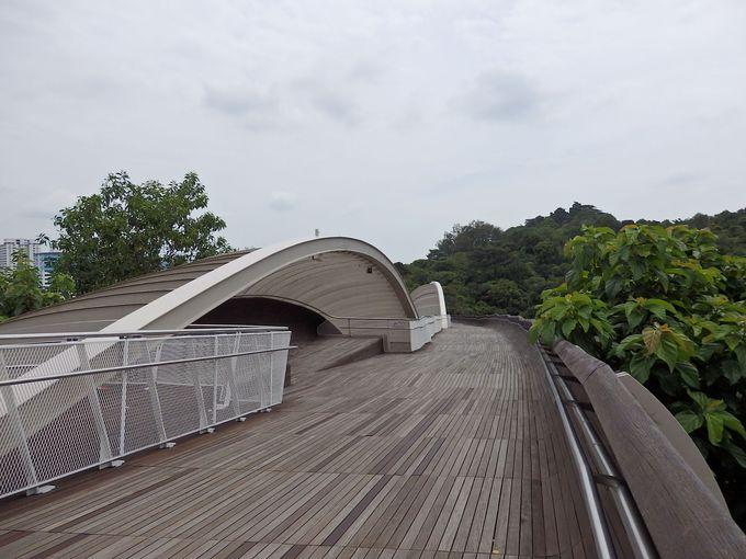 うねる橋「ヘンダーソンウェイブ」