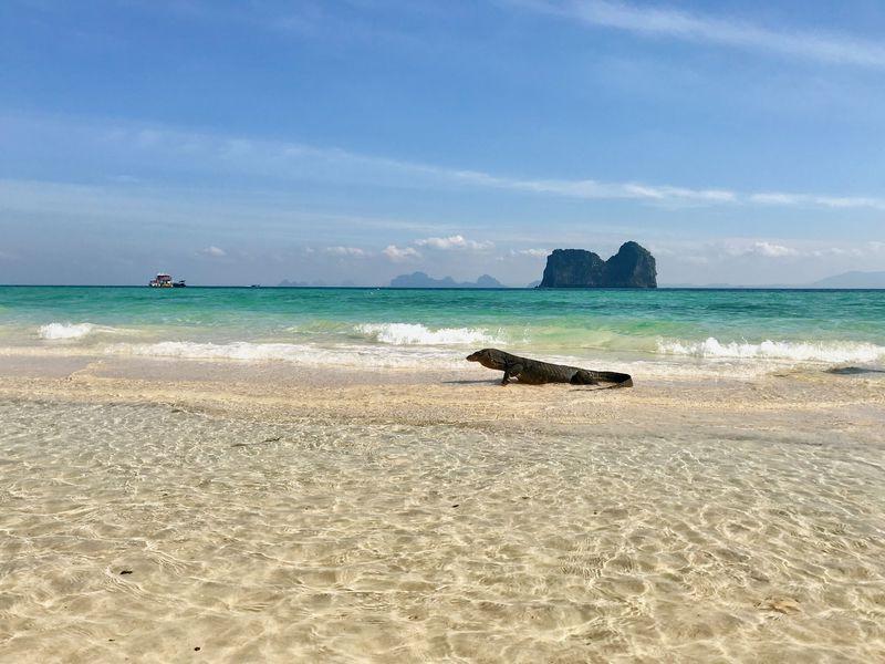 こんな島がまだあった!タイ「ンガイ島」で海を満喫