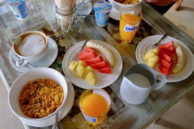 朝食だけでなく、夕食も、タコス!?もいかが?
