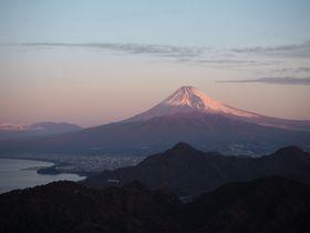 3日間限定!伊豆の国パノラマパークから朝焼けの富士山を眺めよう