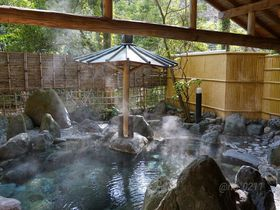有形文化財のあるお宿・天城湯ヶ島温泉「落合楼村上」で贅沢な滞在を