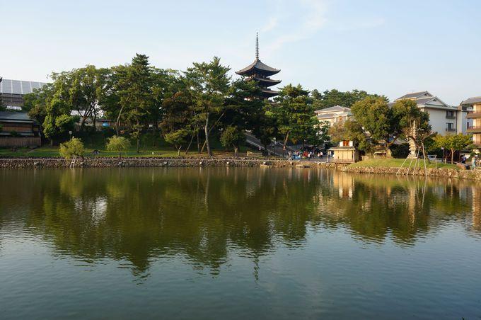猿沢池は奈良時代に造られた興福寺の「放生池」