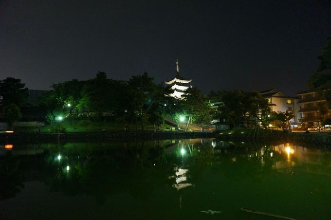 五重塔が水面に影を落とす情緒ある夜景