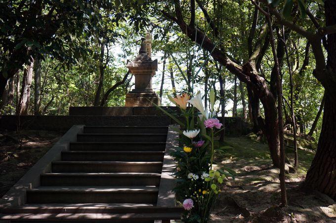 鑑真和上の不屈の精神を今も伝える天平の甍「唐招提寺」