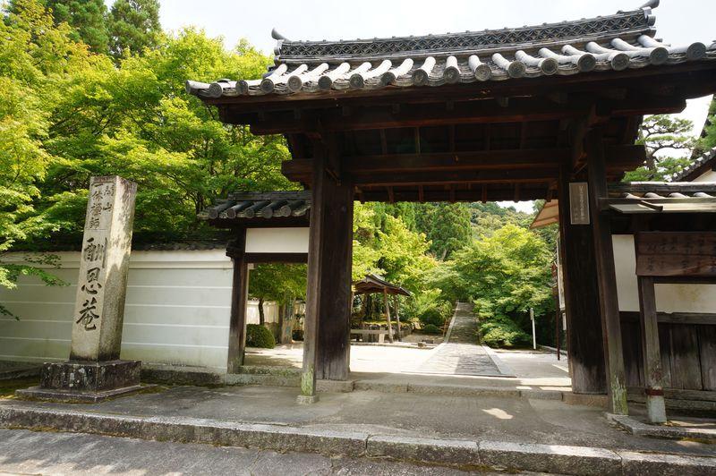 京都「酬恩庵」で一休みひとやすみ