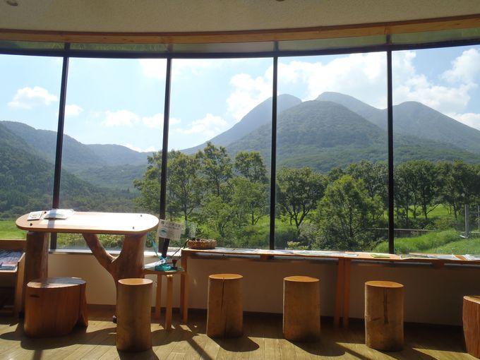 九州の屋根・くじゅう連山を支える「長者原ビジターセンター」が凄い!
