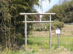 この異形像は果たして神か?仏か?大分県竹田市「上坂田の磨崖仏」に秘められたミステリー