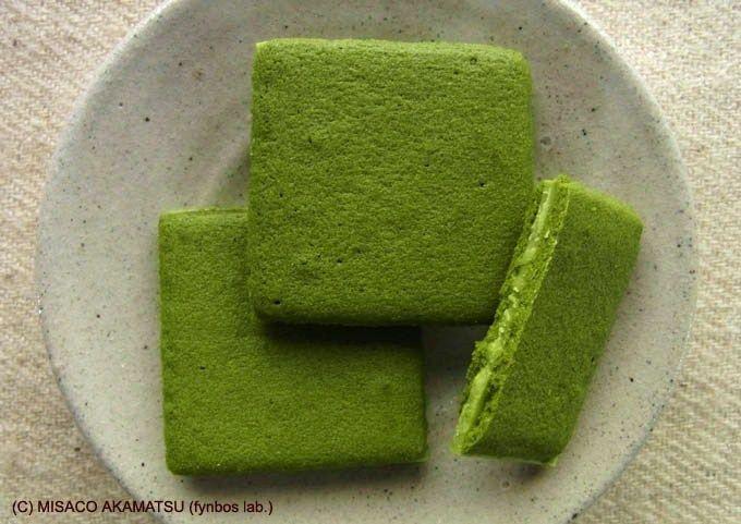 濃厚な「茶一葉」の素、福岡を代表する八女茶の緑眩しい茶畑