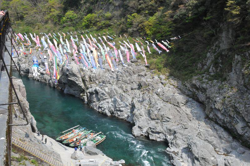 百数十匹の鯉のぼりが泳ぐ吉野川の景勝地、四国の秘境・大歩危峡!