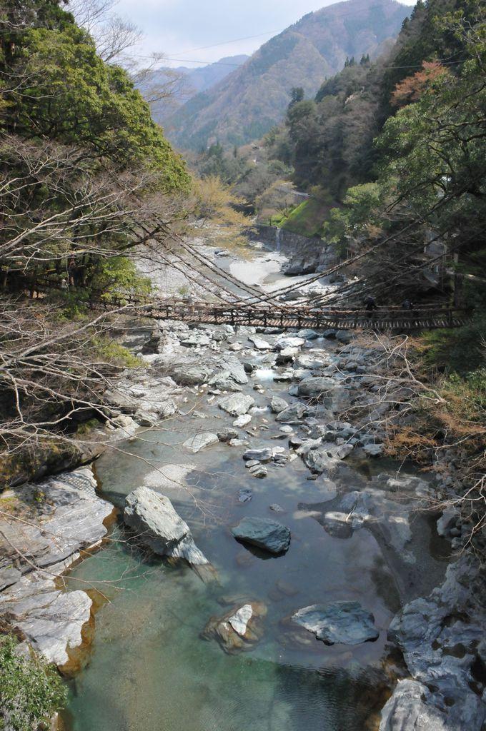 かずら橋と祖谷川