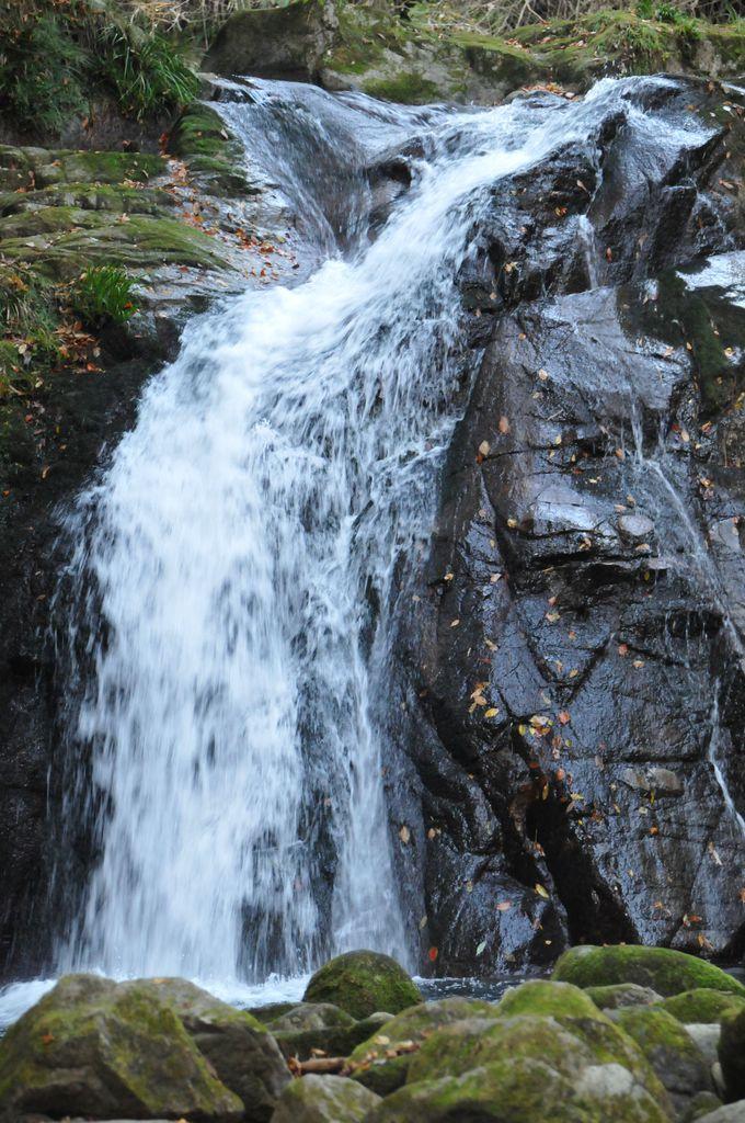 家族連れでも安心!いつ行っても癒される美しい渓谷「花貫渓谷」