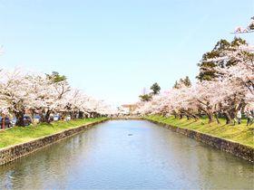 繊細優美な日本の良さ。山形県・庄内鶴岡の春夏の旅
